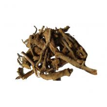 Pushkarmool root